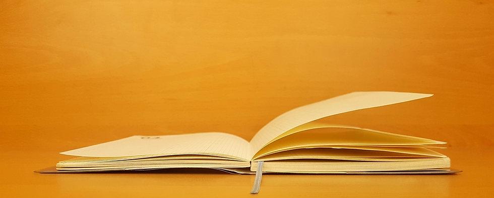 open wide book_edited_edited.jpg