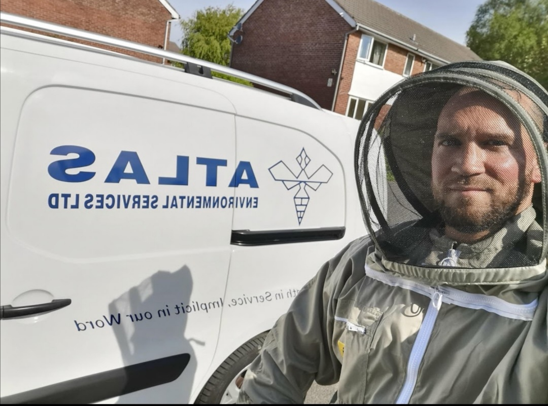 east-lancashire-pest-control-service-council-atlas-environmental-servcies-ltd-wasp-nest-lancashire-w
