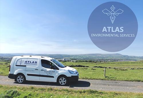 pest-control-burnley-pest-control-near-me-lancashire-commercial-wasp-nest-treatment-atlas-environmental-services-ltd