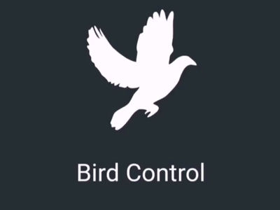 Bird Control for Lancashire, Bird Proofing Solutions for the North West....
