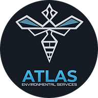 pest-control-burnley-atlas-environmental-services-ltd-wasp-nest-treatment-removal-burnley