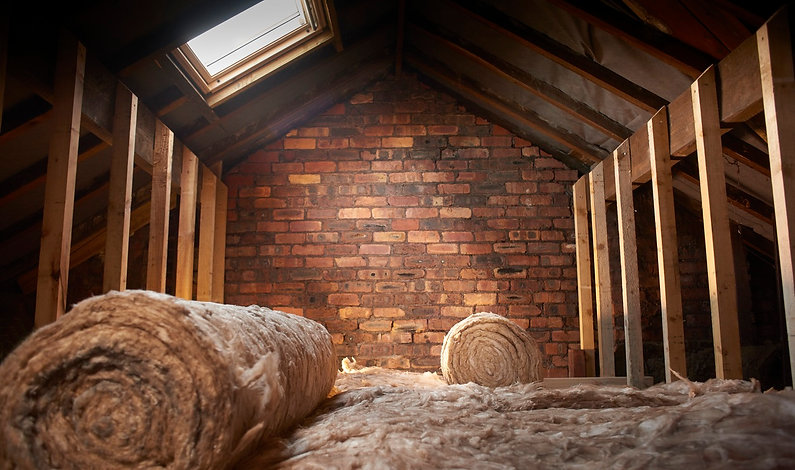 loft-clearance-burnley-waste-removal-re-insulate-loft-clear-out-help-rats-mice-pest-control-burnley-pest-service-colne-nelson-lancashire-rats-mice-wasps-fleas-ants-atlas-environmental-services-ltd-pest-solutions-commercial-waste-clearance-east-lancashire-bird-clean-up-loft-clearance-pest-control-east-lancashire-prevention-solutions
