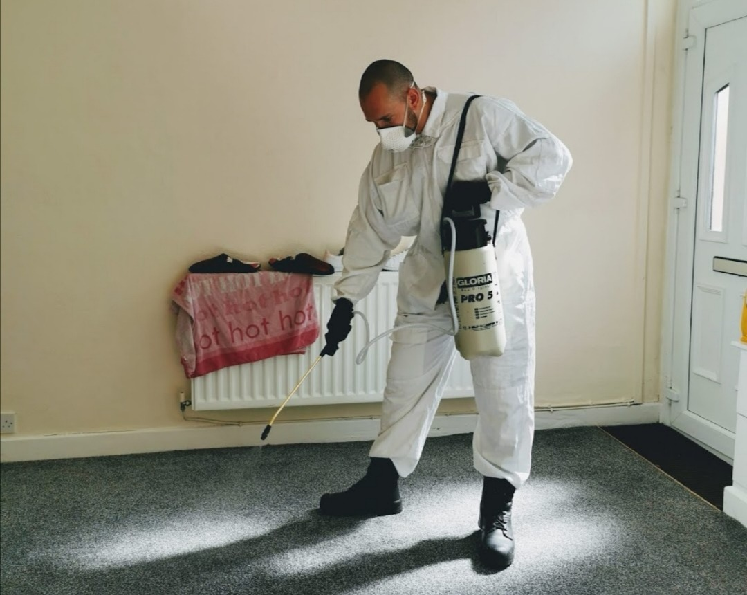 flea-treatment-east-lancashire-pest-control-burnley-atlas-environmental-services-ltd-fogging-insect-