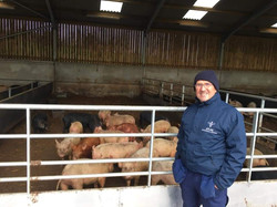 agricultural-pest-control-east-lancashire-pest-control-help-covid19-services-farm-pest-control