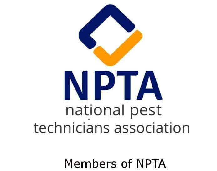 npta-burnley-lancashire-atlas-pest-control-commercial-prevention-atlas-environmental-services-ltd-quality-pest-solutions-east-lancashire-warehouse-pest-control-basis-prompt-register-rats-mice-blackburn-accrington-wasp-nest-east-lancashire