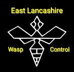 wasp-nest-treatment-removal-Burnley-Nelson-Pendle-East-Lancashire