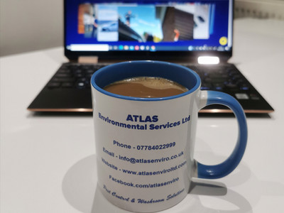 Require Pest Control? Stay Calm Ring Atlas Environmental Services Ltd.....