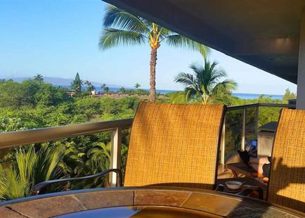 Maui Banyan Q409