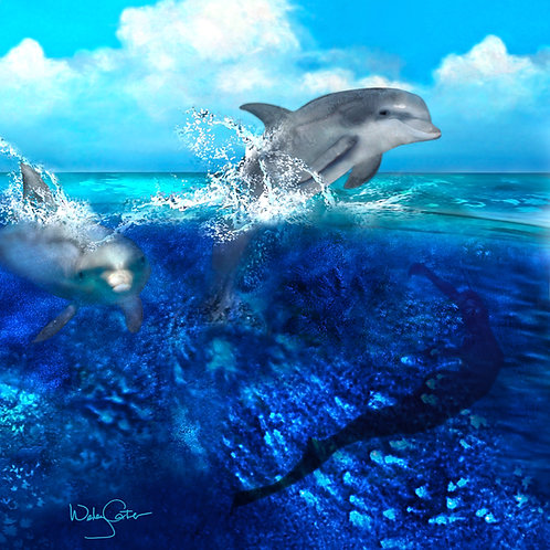 """Dolphin Dive"""