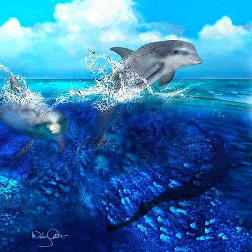"""Dolphin Dance"""