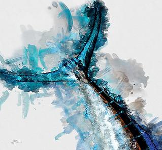 Kent-Krebeck-Marlin-Pelagic-Fish-Blue-Marlin.png