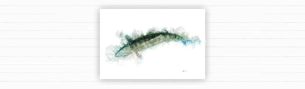 bone-fish-painting-kent-krebeck-grey-ghost-flats-fishing-.png