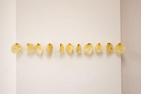Petals - Sophie Erin Cooper-10_edited.jp