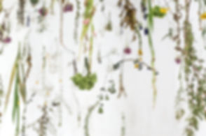 Sophie Erin Cooper - Floating Garden-.jpg