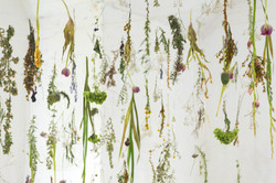 Sophie Erin Cooper - Floating Garden-1-3