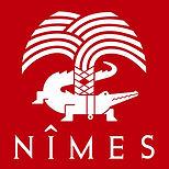 logo-rouge-2007-Ville.jpg