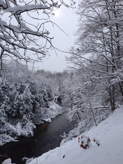 The Icy Cold Betsie River