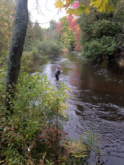 Fishing on the Betsie River