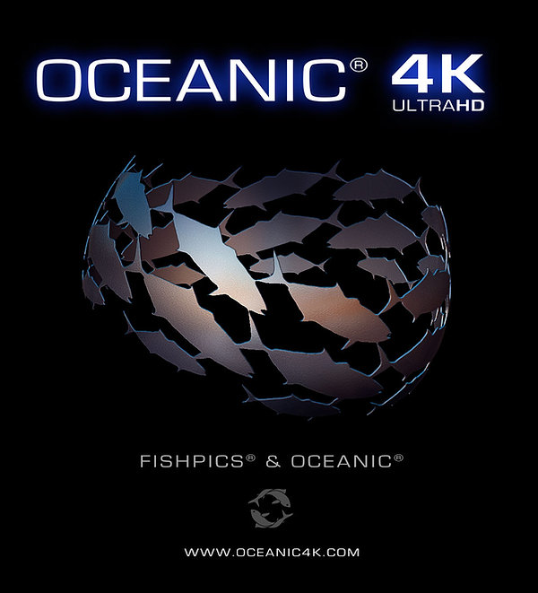 Oceanic large format projection horta azores