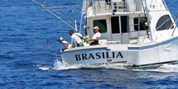 Azores_Brasilia_strip_2_edited