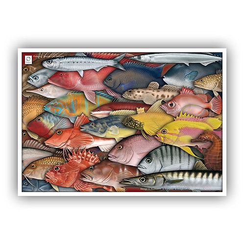 Coastal Fishes of the Azores (composition) Poster