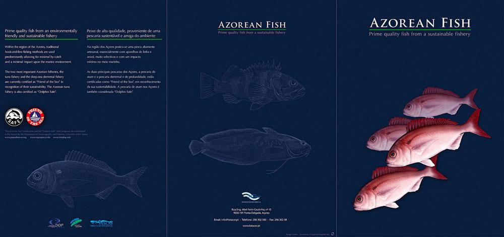 AZORES_FISHPICS_SLIDE_55w