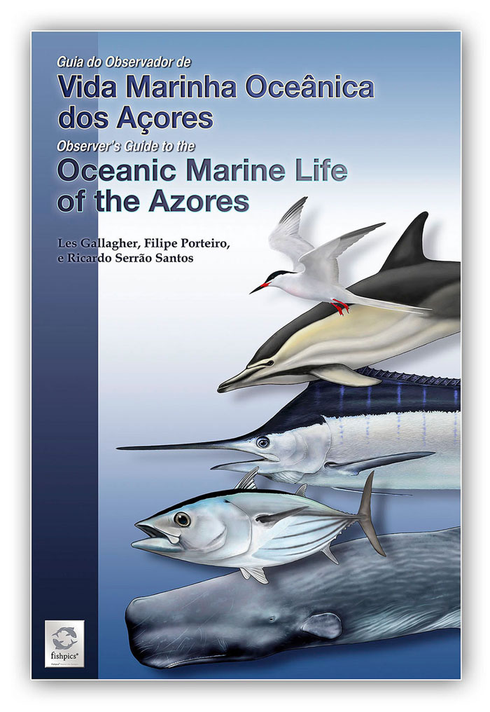 AZORES_FISHPICS_SLIDE_90w