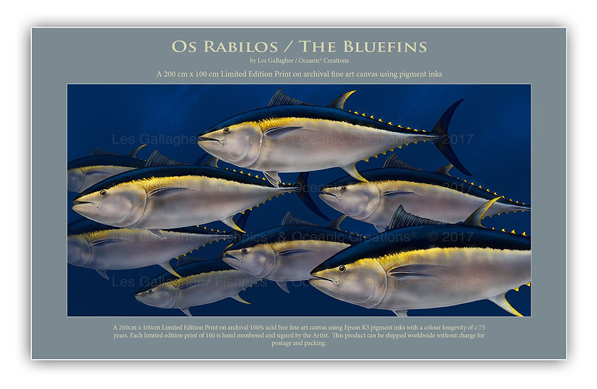 bluefin art horta azores
