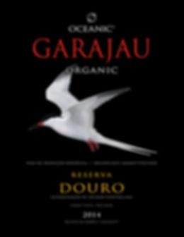 horta azores organic wine