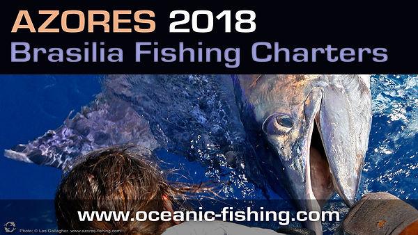 blue marlin fishing horta azores