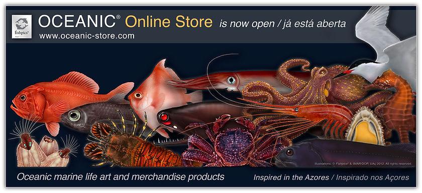 horta, azores - oceanic store