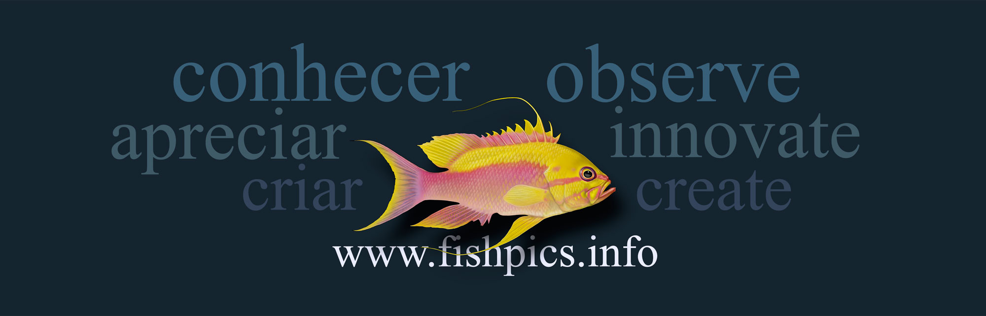 FISHPICS_CREATE