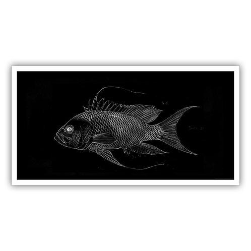 Open Edition Print - Seaperch  90x47cm