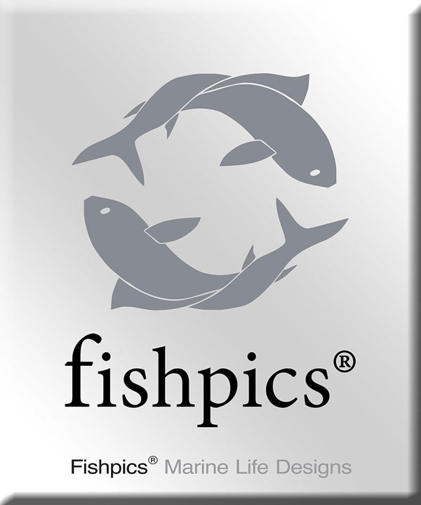 AZORES_FISHPICS_SLIDE_1w