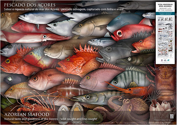 Azores seafood and marine life posters