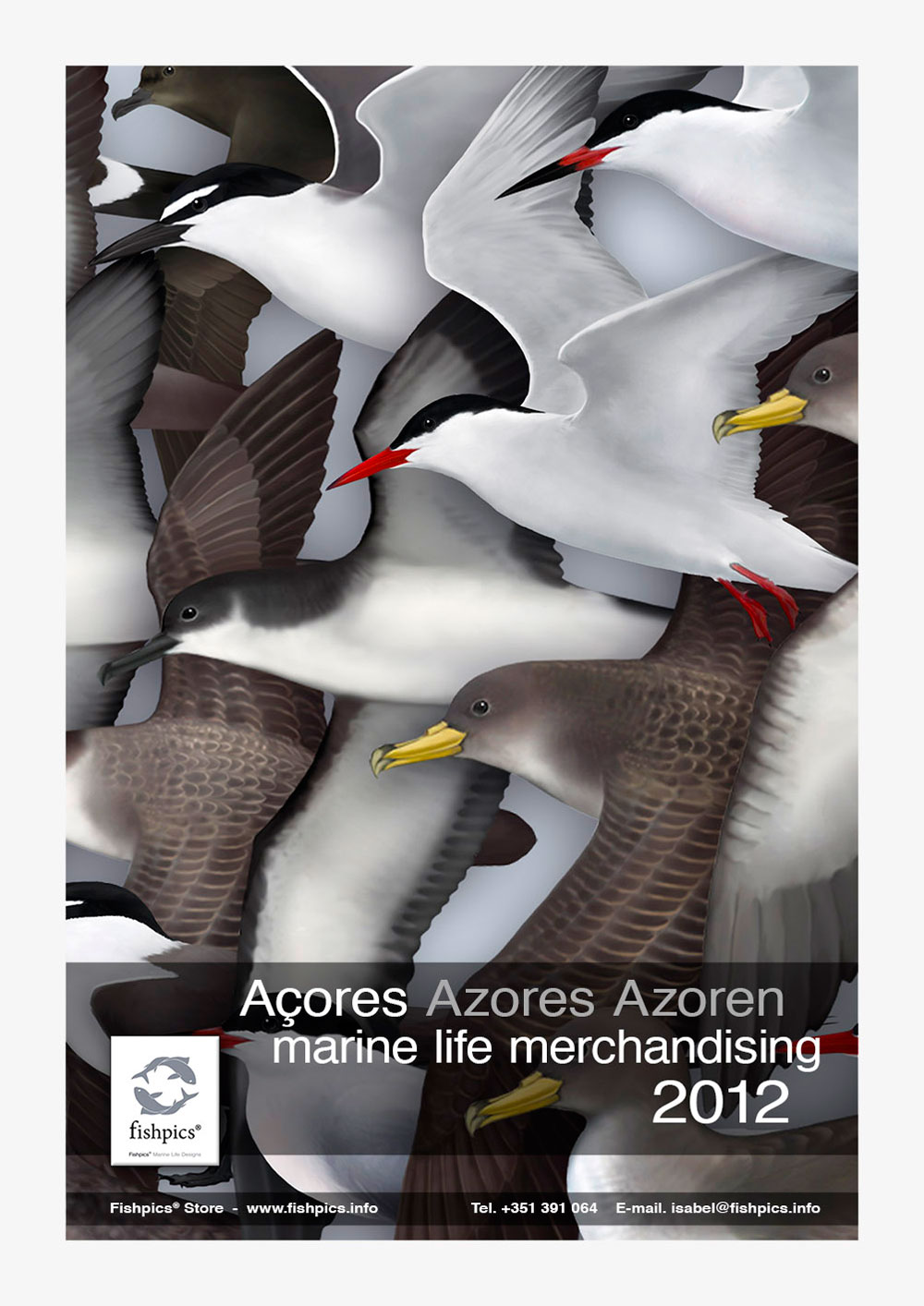 AZORES_FISHPICS_SLIDE_73w