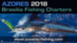 white marlin fishing azores