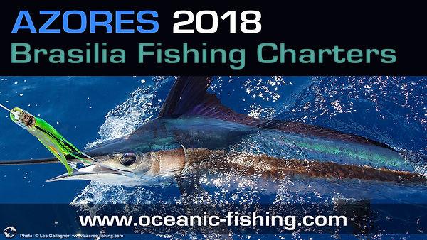marlin fishing horta azores