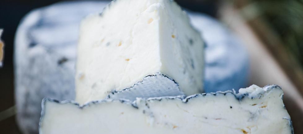 Camembert Asche