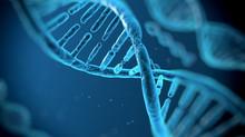 A genética relacionada à infertilidade