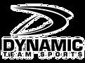 Dynamiclogo_edited_edited.png