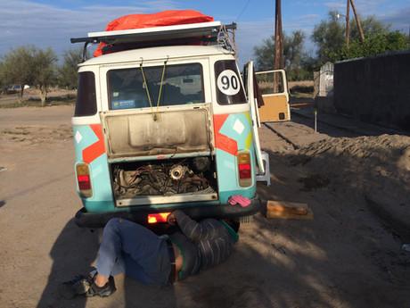 La Mulita herida, en Argentina