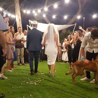 השכרת חופה לחתונה