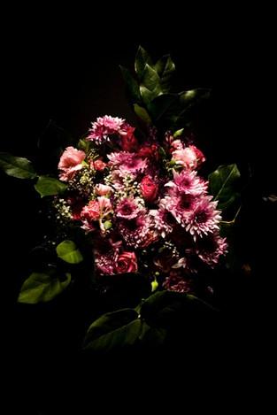 Blume 005.jpg