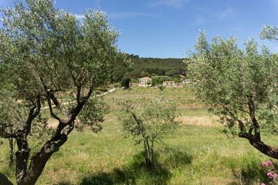 STM Dorf 053.jpg