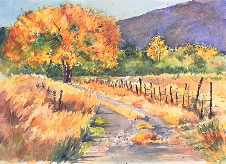 Road to Reinhackle's Ranch, Lynn Marit Peterson, LP250 1.JPG