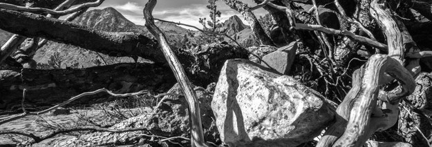 Virginia Peak, Mike Wright, MW36.jpg
