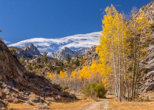 Walking into Fall, Sabrina Basin