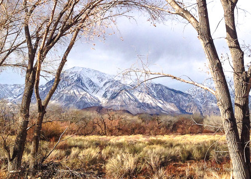 "Mt. Tom from Owens Valley Floor, Winter, 18"" x 24"""