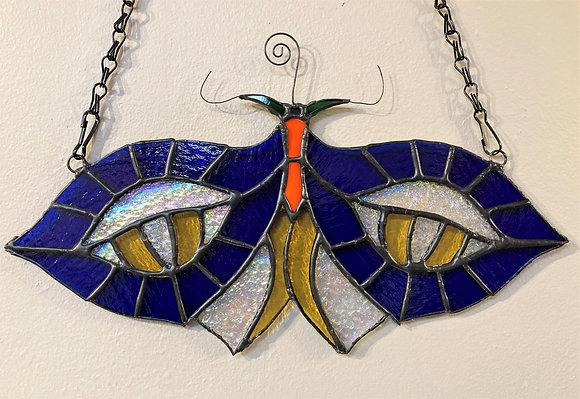 Ocellus Moth